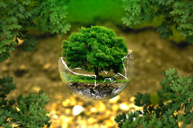 Badan Sertifikasi ISO 14001:2015